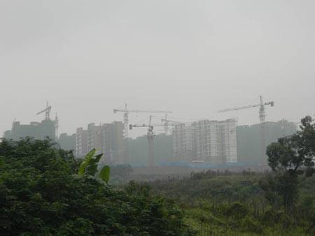 金信未来锦城